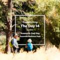 ヨセミテ国立公園で子グマに遭遇して死ぬかと思いました。(14日目)
