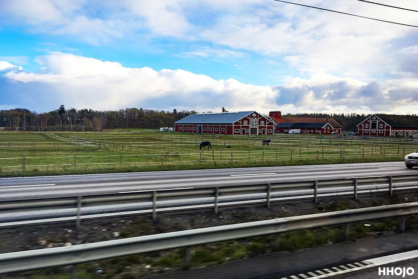 day28_sweden_stockholm_img9