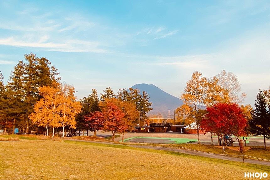 tokyo_hokkaido_niseko_experience_img5